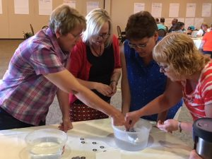 : Implementing the Idaho Science Standards through K-12 Inquiry and Project Based Learning
