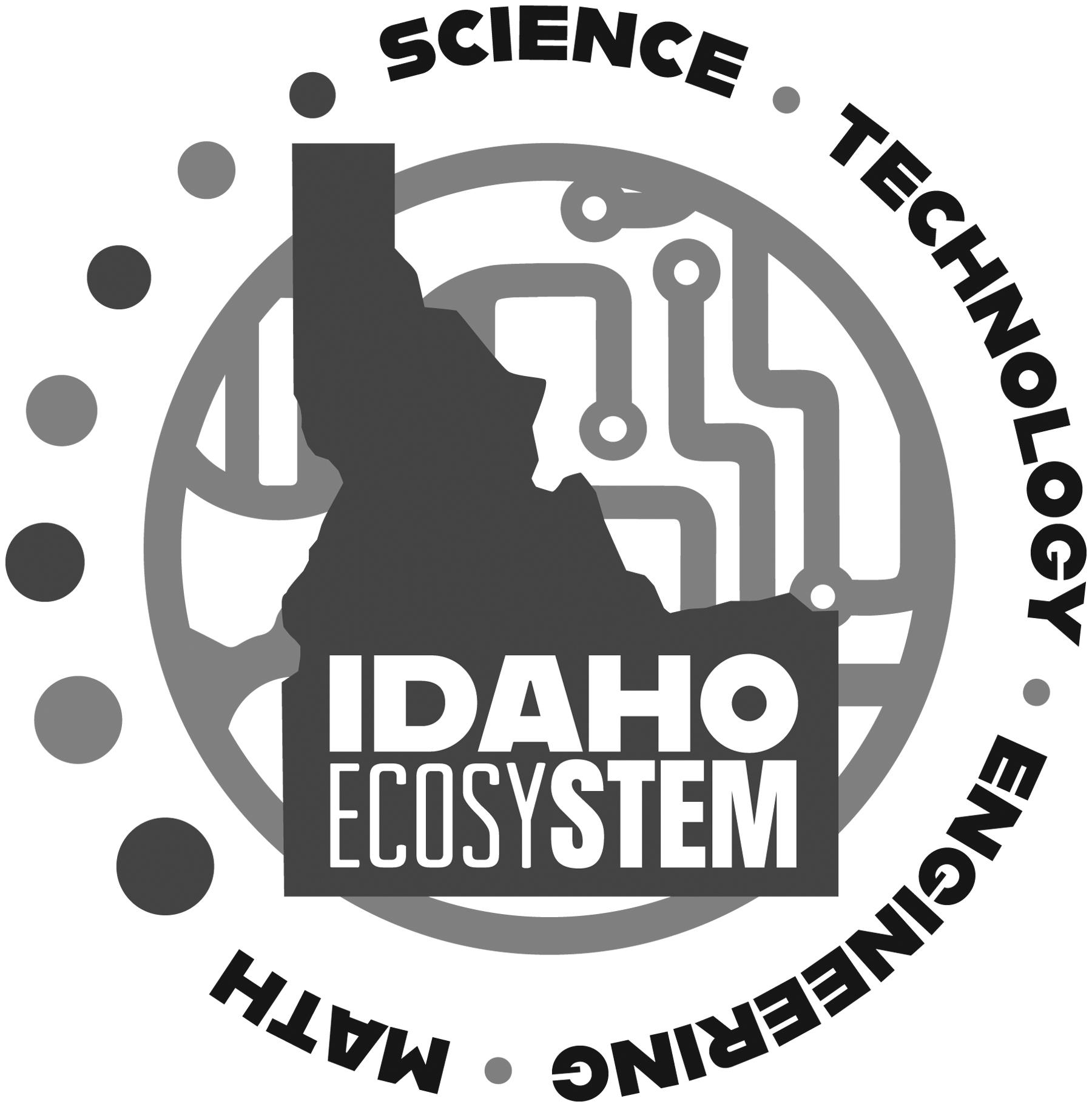 EcosySTEM logo Gray JPG Format