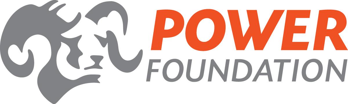 Power Engineers Website