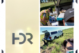 Rae Peppley externship at HDR Engineering
