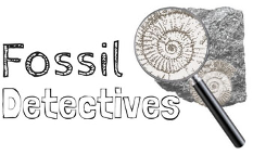 Fossil Detectives